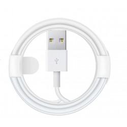 Câble Lightning iphone classique vers USB - 2 mètres